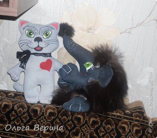 Котик и ежик фото 1