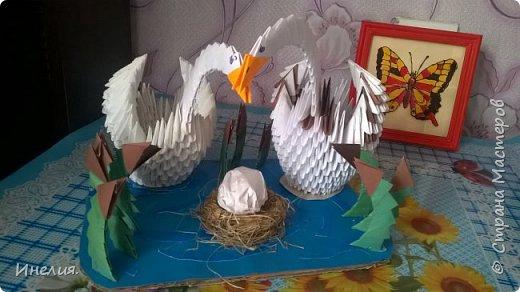 Лебеди. фото 1