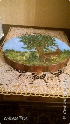 Объемное панно на спиле дерева. Объем делала шпаклевкой  под салфеткой и на салфетке.По листве объем сделала декоративными камушками.Салфетка была в единственном экземпляре,поэтому контуры лося и ствол дерева осторожно обводила под копирку фото 4