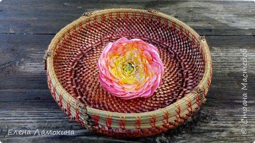 Плетение из бумаги фото 1