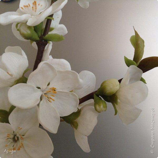 Цветущий хеномелес или Японская айва из холодного фарфора. фото 3