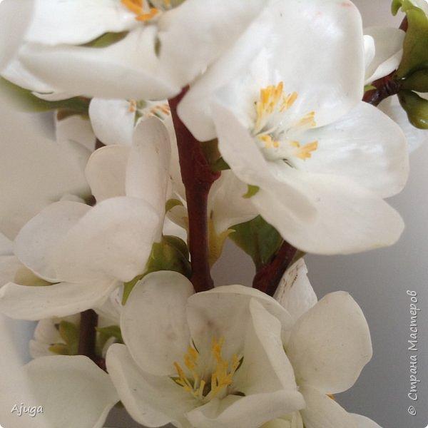 Цветущий хеномелес или Японская айва из холодного фарфора. фото 4