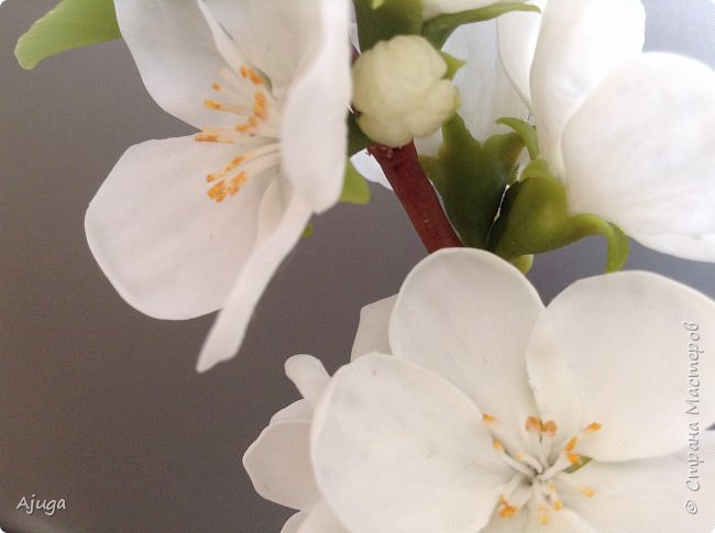 Цветущий хеномелес или Японская айва из холодного фарфора. фото 20
