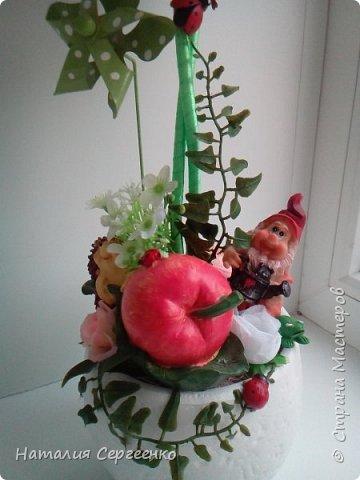 Моя яблонька фото 2