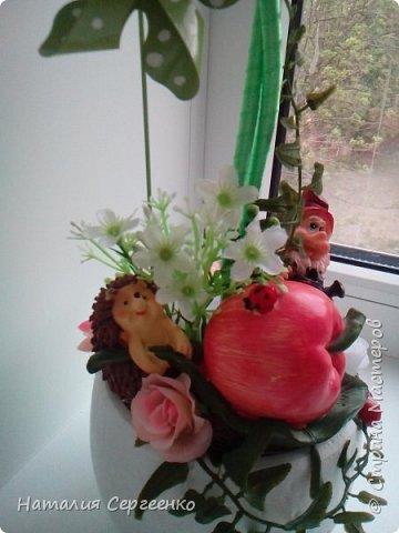 Моя яблонька фото 3