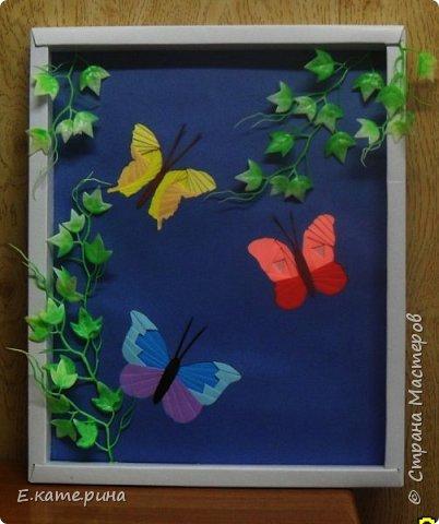 В краю порхающих бабочек