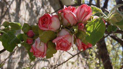 Всем здравствуйте!!! Еще один ободок для моей девочки. На этот раз с розами.Хотела сделать бутоны, но получилось....то,что получилось))) фото 3