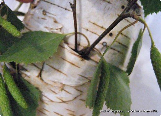 """Для этого венка понадобились: проволока, газета, клей ПВА, береста, нож, папиросная бумага, малярная лента, удлинители для цветов, термопистолет, лента, медицинский шприц на 10-20 мл. ДЛя декора - живые ветки, цветы по желанию, а также сувенирное пасхальное яйцо, искусственное гнездо и птичка. Во время поиска МК венка, оформленного берестой, увидела фотографии венка Vалери  """"Декоративный венок"""" http://stranamasterov.ru/node/594577    МК и детального описания изготовления не было, но фотография очень помогла. Vалери, спасибо.  .  фото 25"""