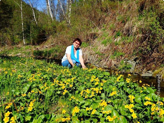 Это Иоанн Кронштадтский, святой праведник, сказал, что цветы – остатки рая на земле. И разве нельзя назвать райским местом этот родник в Бешпельтирском логу? У нас, в Горном Алтае, такая красота повсюду. И я приглашаю вас на неспешную прогулку по цветущему Алтаю. фото 45