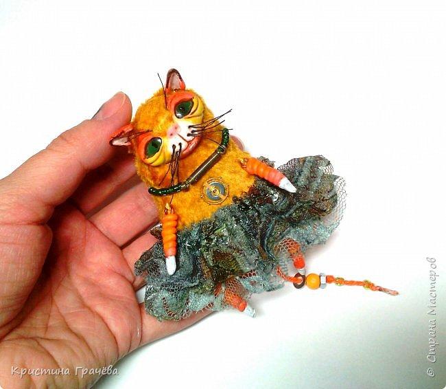 Кошка. фото 4