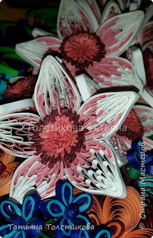 Краски лета фото 5