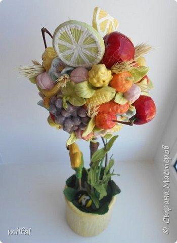 Здравствуйте дорогие мастерицы,наконец то и у меня родился вкусный топиарий,давно хотела себе такой! Всё из солёного теста-фрукты,ягоды,овощи и горшочек. фото 4