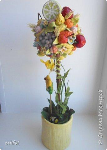 Здравствуйте дорогие мастерицы,наконец то и у меня родился вкусный топиарий,давно хотела себе такой! Всё из солёного теста-фрукты,ягоды,овощи и горшочек. фото 6