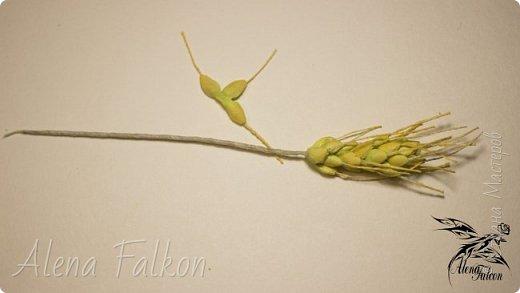 Хочу показать вам, как я делаю пшеничный колосок из фоамирана.  Недавно мне поступил заказ на свадебные украшения с такими колосьями. Посмотрев несколько мастер-классов, я поняла, что все они достаточно трудоемкие по времени. Для меня же время — очень важный фактор. Поэтому я сделала колосок по-своему. И с радостью делюсь с вами своим способом изготовления пшеничного колоса.  фото 31