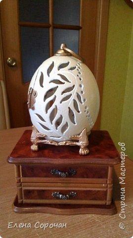 Шкатулка из яйца страуса фото 6