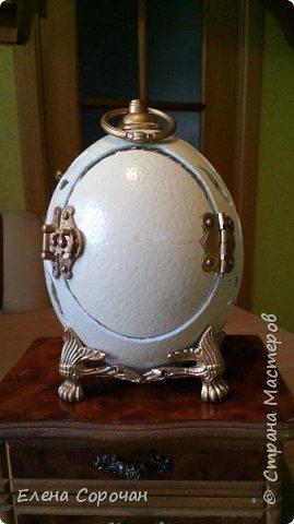 Шкатулка из яйца страуса фото 4