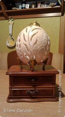Шкатулка из яйца страуса фото 2
