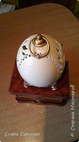 Шкатулка из яйца страуса фото 5