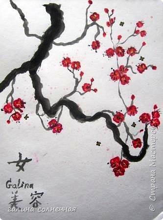 Здравствуйте.  Природа живописна. Цветут цветы. фото 3