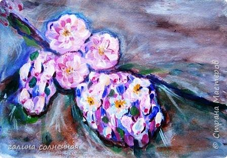 Здравствуйте.  Природа живописна. Цветут цветы. фото 2