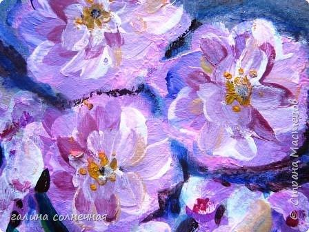 Здравствуйте.  Природа живописна. Цветут цветы. фото 1