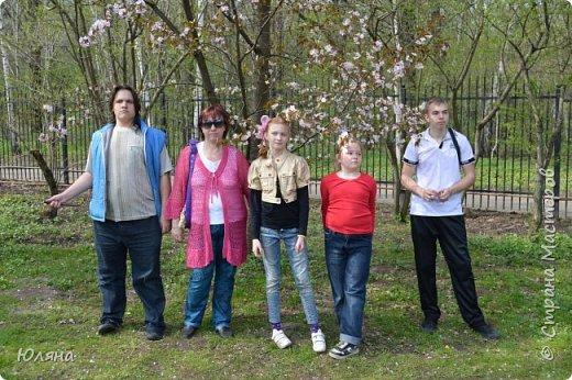 поход в Ботанический сад.......сакура фото 3