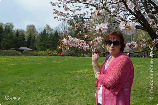 поход в Ботанический сад.......сакура фото 1