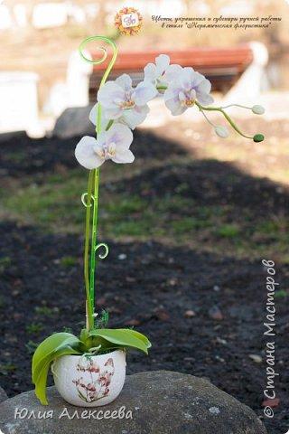 Долго я шла к этому цветку, все никак не решалась, хотя каттеры и молды на него приобрела самыми первыми  фото 2