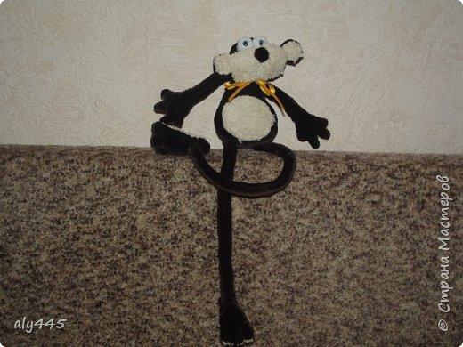 Знакомьтесь! Символ 2016 года - обезьянка!)) фото 2