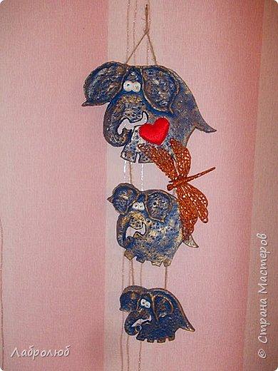 слонятки фото 2