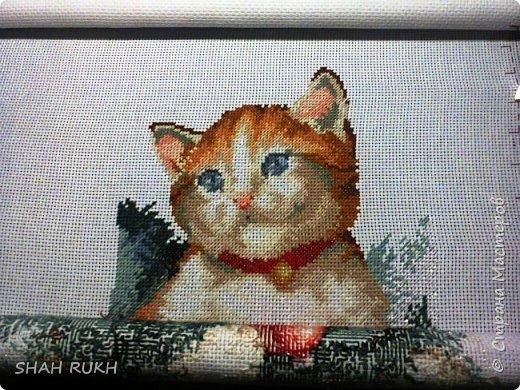 Это то, что получилось у меня в итоге. Мне работать было очень легко и очень радостно.. давно хотела реализовать свою хочушку - этого милого котика... и вот ОН! фото 5