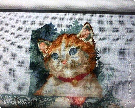 Это то, что получилось у меня в итоге. Мне работать было очень легко и очень радостно.. давно хотела реализовать свою хочушку - этого милого котика... и вот ОН! фото 6