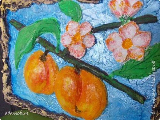 фрукт фото 1