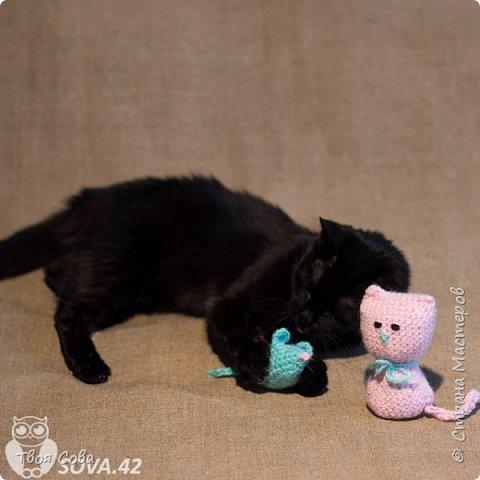 Вязаные котики фото 2