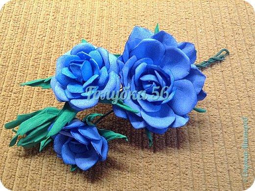 Мои розы фото 3