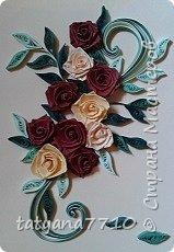 Ах, розы.... фото 1
