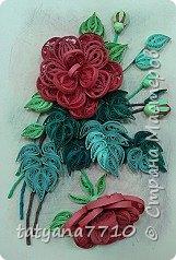 Ах, розы.... фото 5