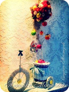 """Всем доброго времени суток) давно заглядывалась на различные велосипеды, решила сделать вот такой, с топиарием) получилось очень ярко и сочно!) прямо """"летом запахло""""))) фото 1"""