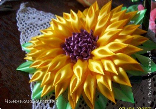 Цветок простой, но мне очень нравится! фото 12