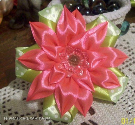 Цветок простой, но мне очень нравится! фото 6