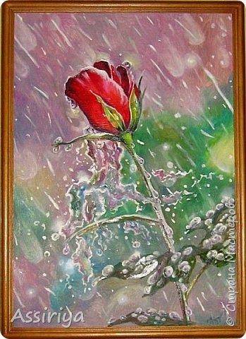 Моя версия розы по мастер-классу Александра Маранова. Подарена на день рождения коллеге. Правда она ее назвала тюльпаном! двп, масло, 30х40 фото 1