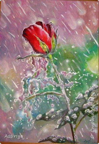 Моя версия розы по мастер-классу Александра Маранова. Подарена на день рождения коллеге. Правда она ее назвала тюльпаном! двп, масло, 30х40 фото 2
