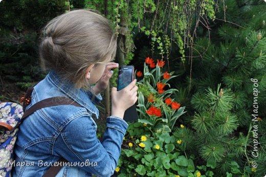 Итак, мы в ботаническом саду МГУ.  310  лет назад заложен этот сад. фото 14