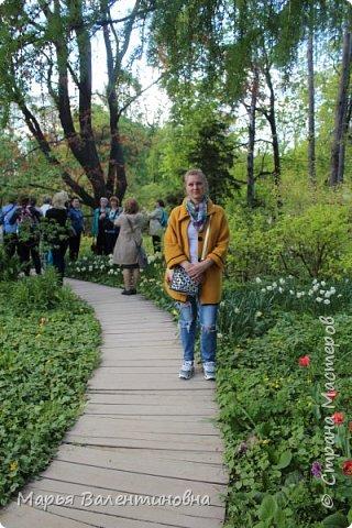 Итак, мы в ботаническом саду МГУ.  310  лет назад заложен этот сад. фото 17