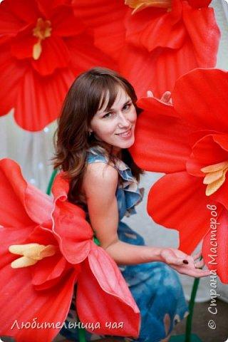 """Мои гиганты!))) В общем идея фотозон увлекла меня и затянула на проект """"Свадьба в подарок 2"""" где море творческих и позитивных людей! на финал проекта я сделала такие огромные яркие цветы, мои фантазийные маки, все с ними фотографировались, и всем очень-очень понравились!!! Это я: фото 1"""