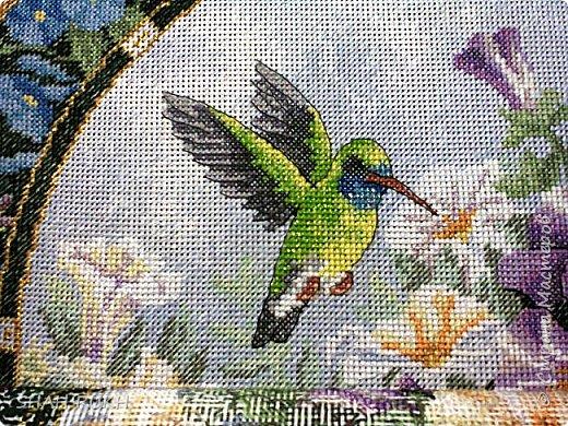 Птичка... начало оживления... фото 2
