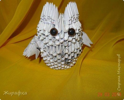 Совушка- умная головушка. фото 1