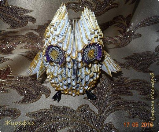 Сова- золотая голова. фото 1