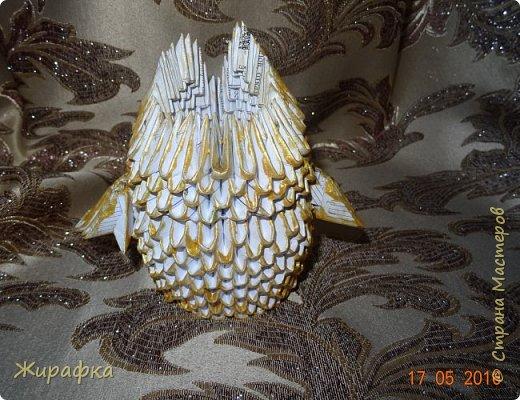 Сова- золотая голова. фото 3
