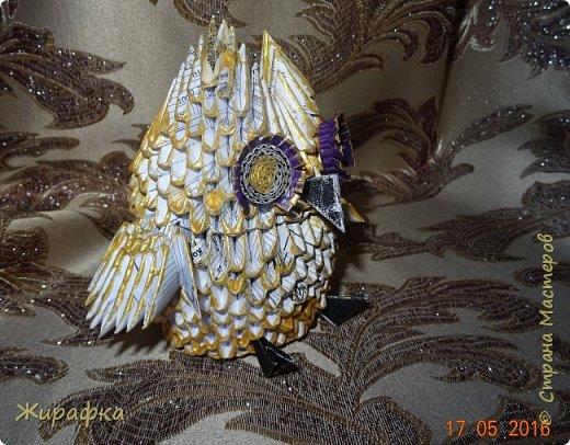 Сова- золотая голова. фото 4